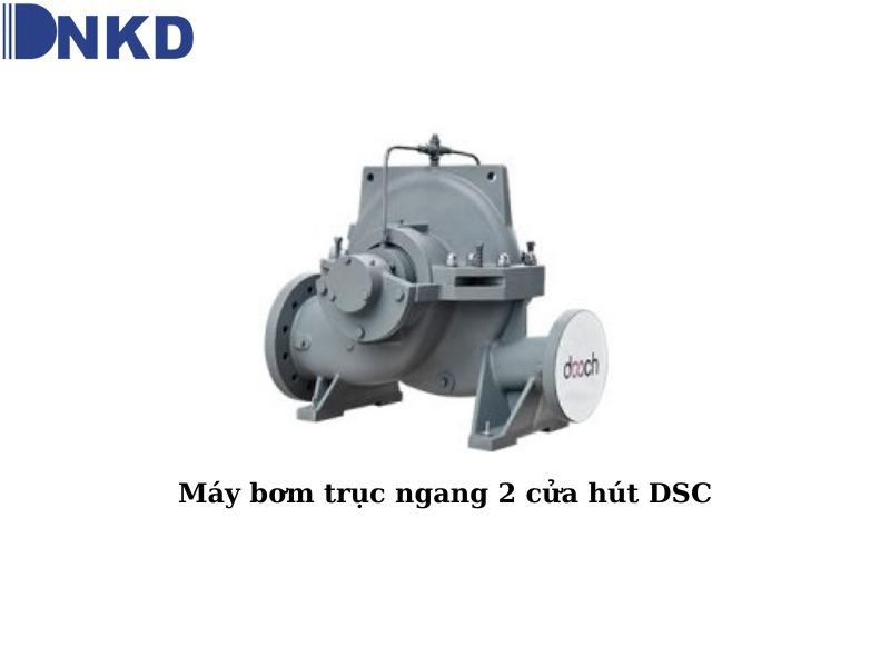 Máy bơm trục ngang 2 cửa hút DSC: Máy bơm công nghiệp công suất lớn